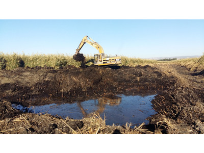 Creation of a pool for breeding ferruginous ducks near the hide © BirdLife Cyprus