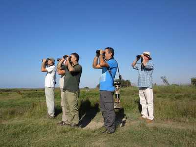Birdwatching at Akrotiri Marsh